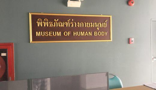 【閲覧注意】バンコク観光に飽きて暇な人むけ人体博物館の感想とアクセス