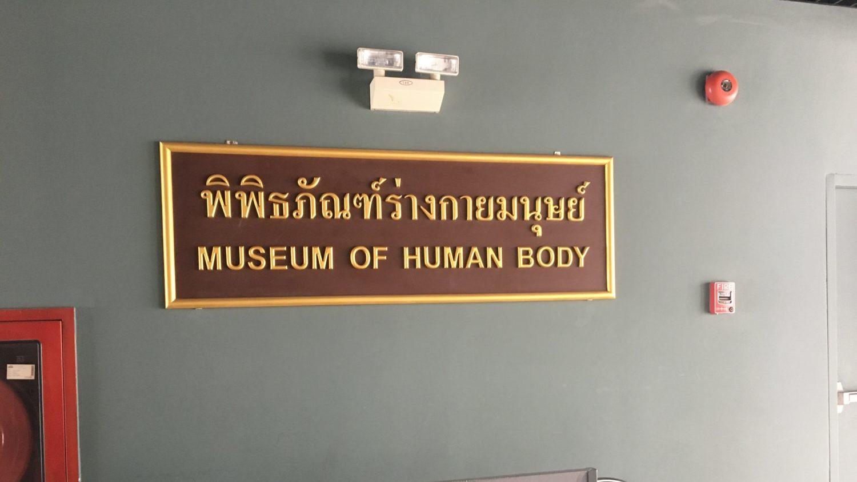 バンコク 暇 人体博物館 飽きた